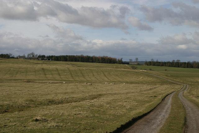 Coldwell farm