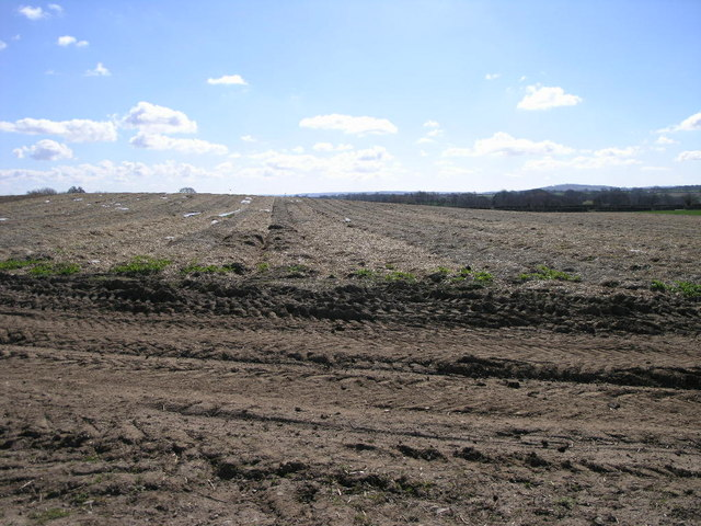 Insulated Field