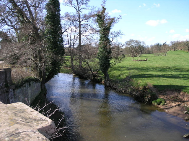 Brook from Bridge