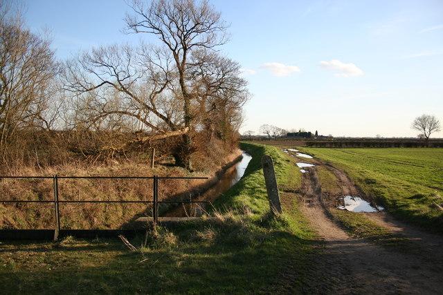 Ox Pasture Drain
