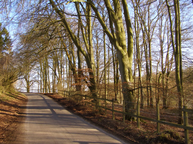 The Middleway passing through the southern tip of Green's Copse