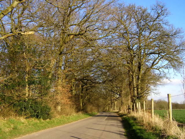The Middleway at Gravelly Bank Copse, Middleton