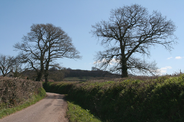 Uffculme: towards Hackpen Hill