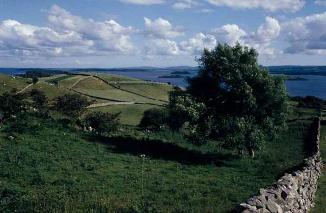 Drumlins around Lough Corrib