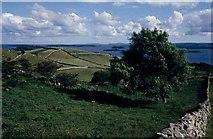 M0953 : Drumlins around Lough Corrib by Mike Simms