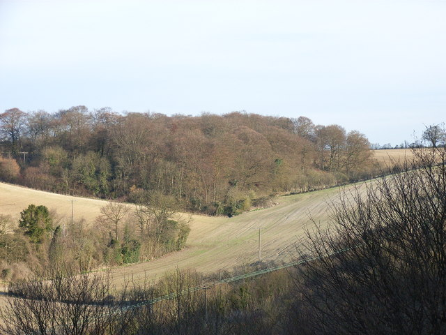 Little Gomm's Wood