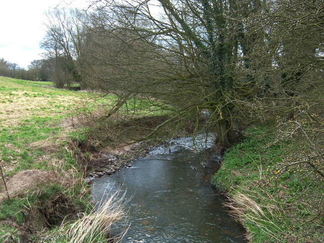Arley Brook
