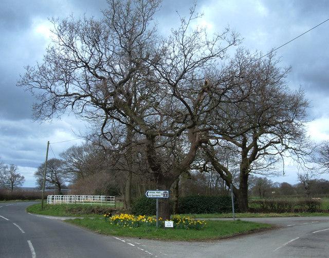 Lane junction at Lower Feldy Green