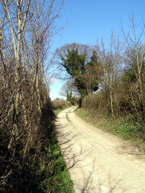 Fawley Lane above Morestead