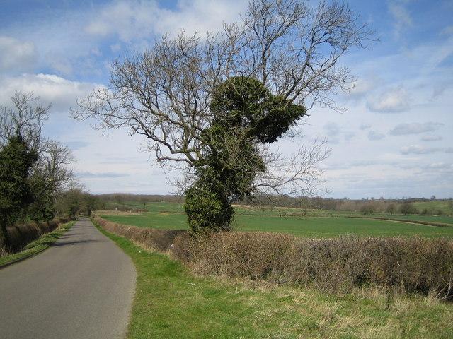 A lane near Caswell