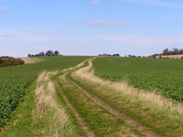 Fawley Lane on Fawley Down