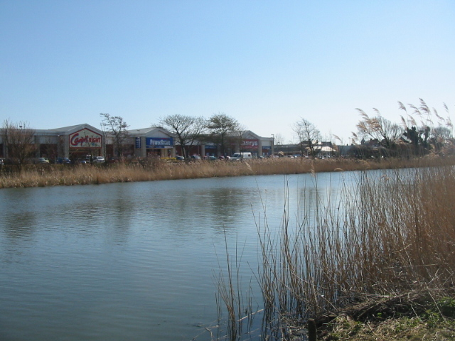 Radipole Lake Nature Reserve and superstores