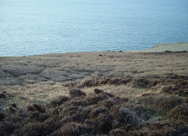 Moorland, Dowlaw