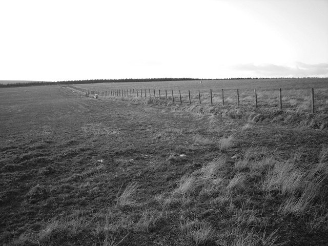 Gowel Hill