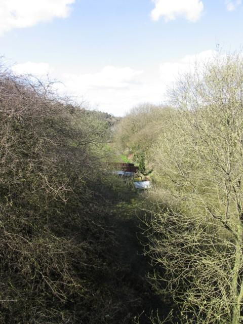 Tilton Railway Cutting