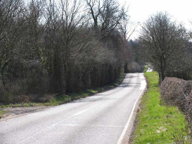 Carlton Road