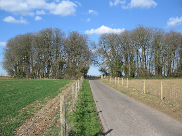 Bisected copse