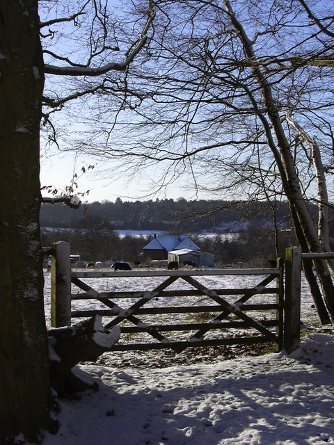 Bunker Farm from Greenham Common