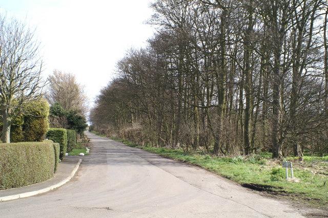 Moss Lane