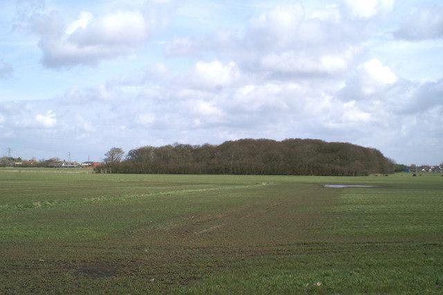 Carr Heys Plantation