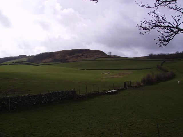 Kendal Fell