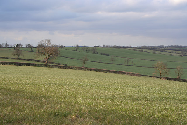 Longcliffe Hill, Old Dalby
