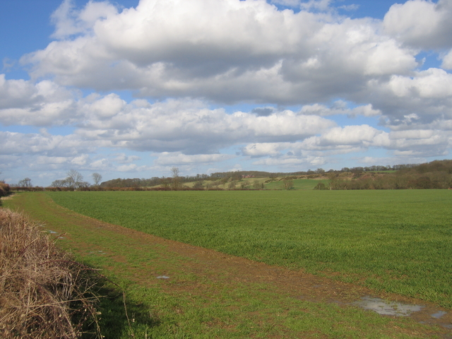 View towards Berry Hill Farm