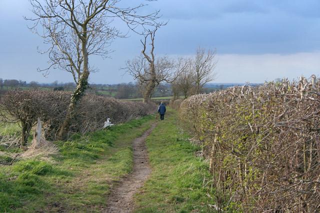Bridleway on Longcliffe Hill