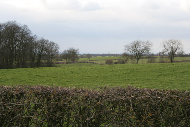 View north from Gibson's Lane