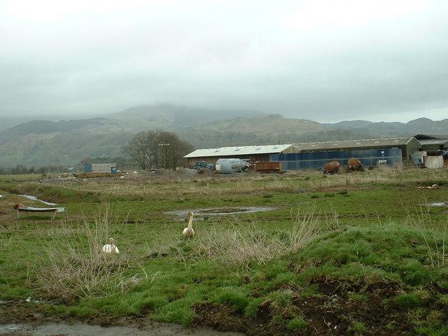 Ty-newydd morfa farm