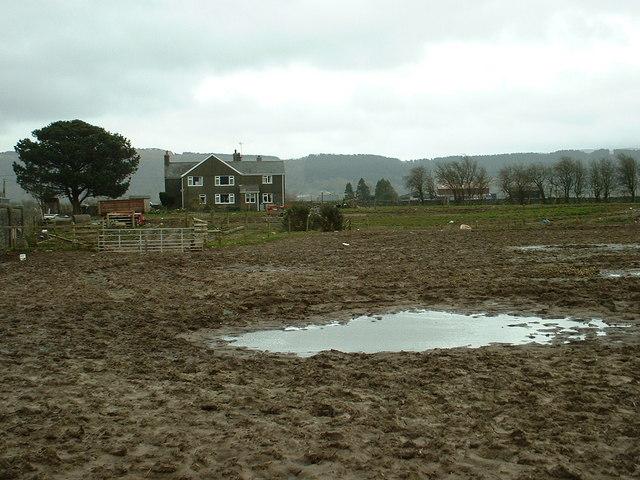 Ffridd Fawr Farm
