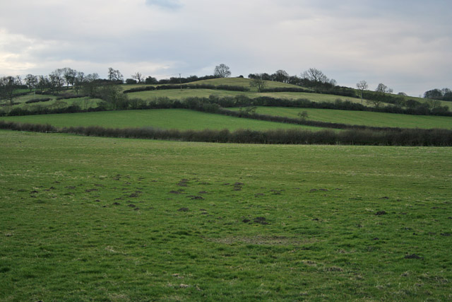 Green Hill near Old Dalby, Leicestershire