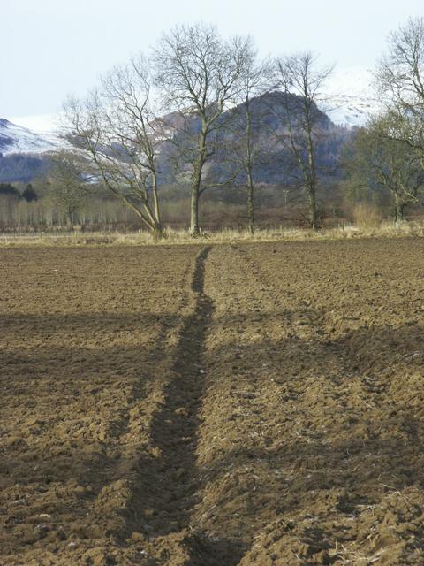 Farmland near Comrie, Perthshire