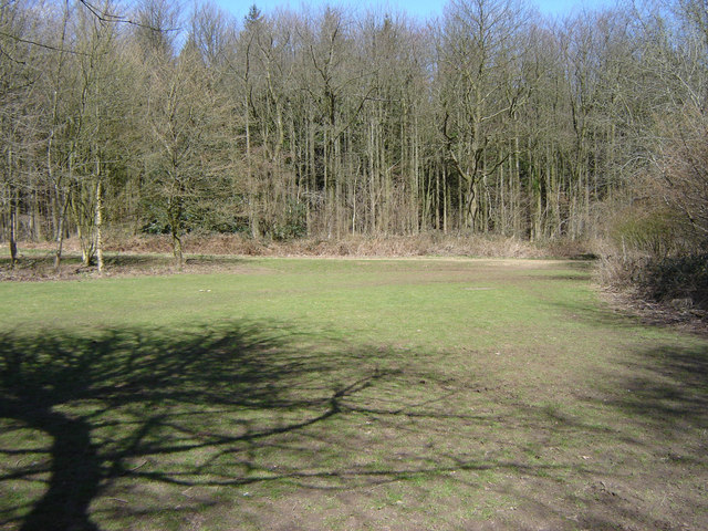 Picnic Area at Chawton Park Woods