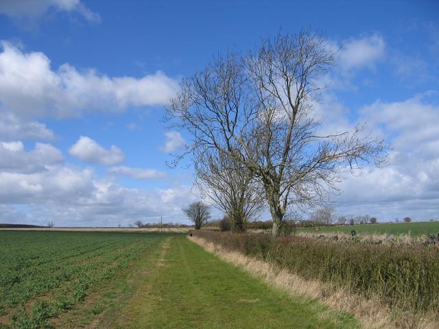 Track at Lower Radbourne