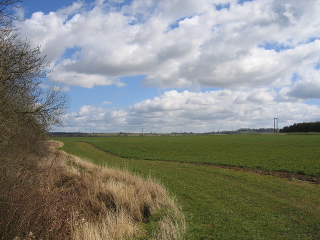 Footpath to Priors Hardwick