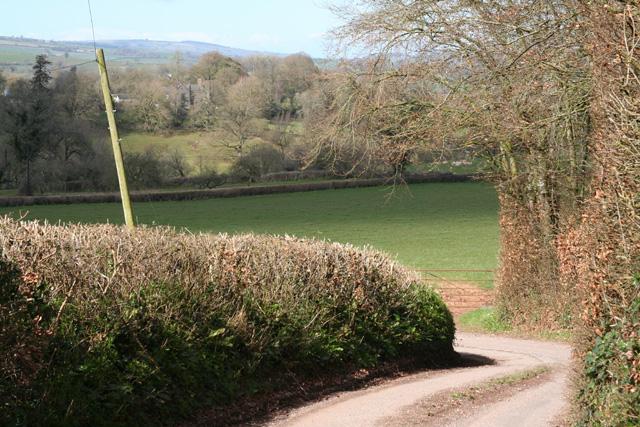 Holcombe Rogus: back lane near Beacon Hill