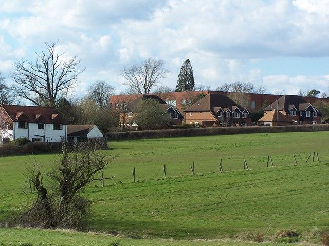 Houses East of Sefton Park