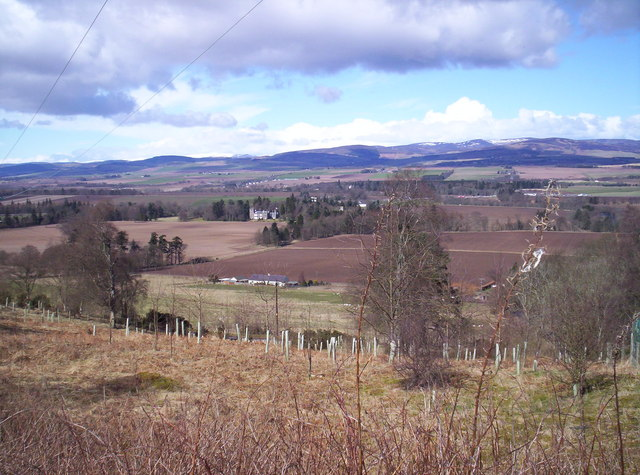 Vale of Strathmore from Finavon Hill