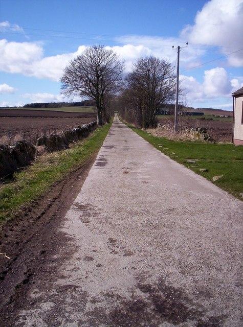 Track to Tilliwhandland