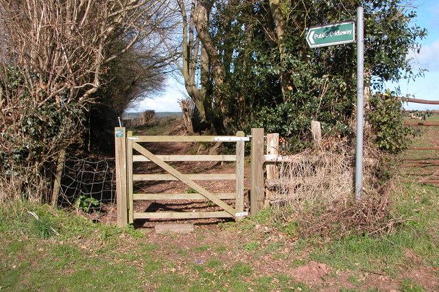 Bridleway at Hoarwithy