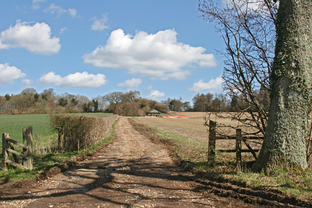 Farm Track near Brockwood Park