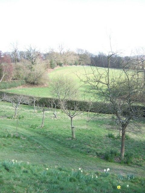 Gardens at Standen
