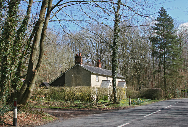 Cottages in woodland