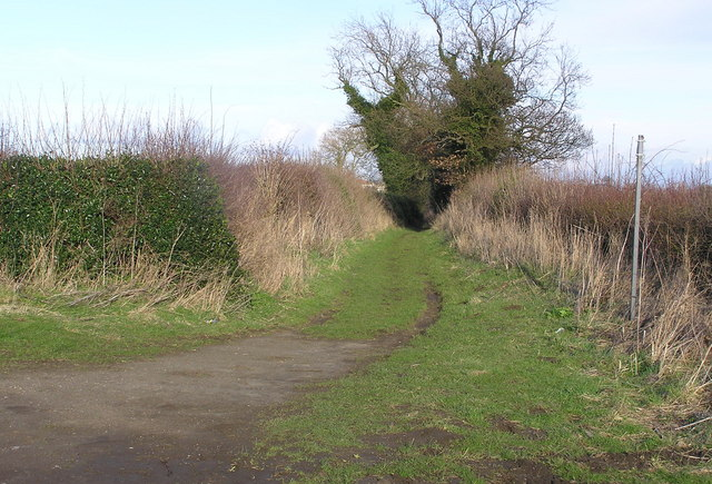Hob Gate  : Bridleway.