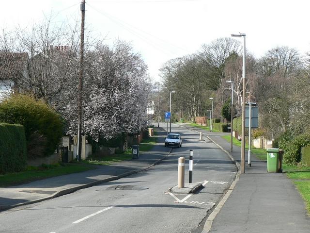King George Avenue, Chapel Allerton