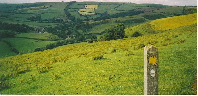 Offa's Dyke Path, on Cwm-Sanaham Hill.
