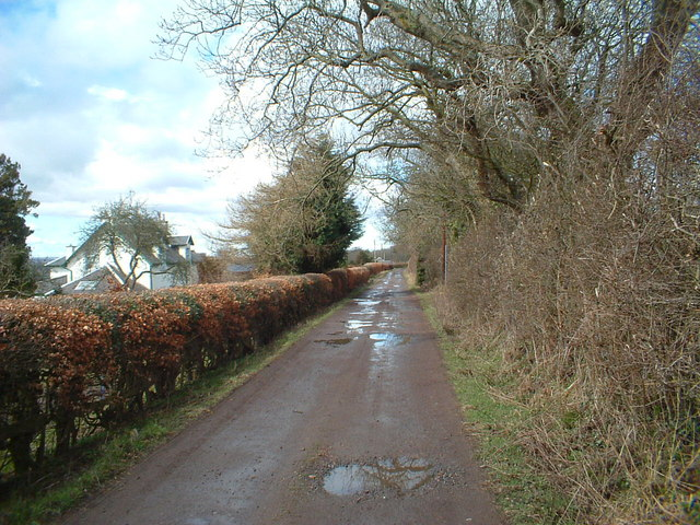 Lane by West Belmont Cottage