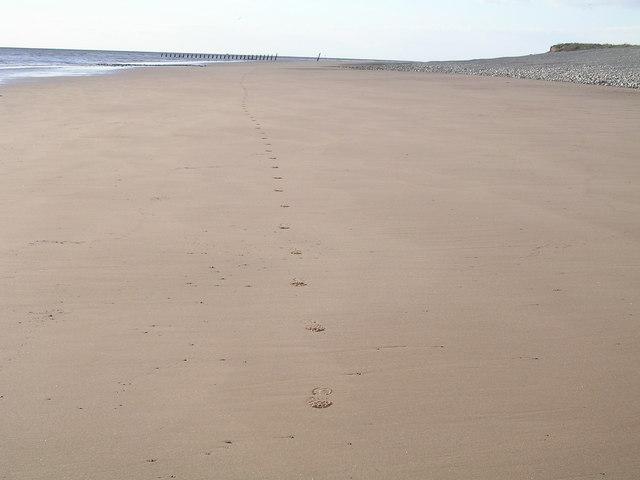Beach at Hilpsford, South Walney Island