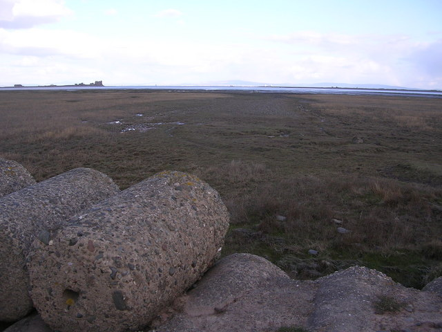Scar End Point, South Walney Island